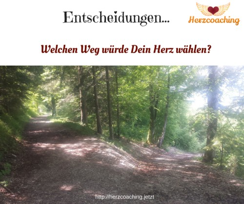 Wie auch DU Deinen Herzensweg gehen kannst