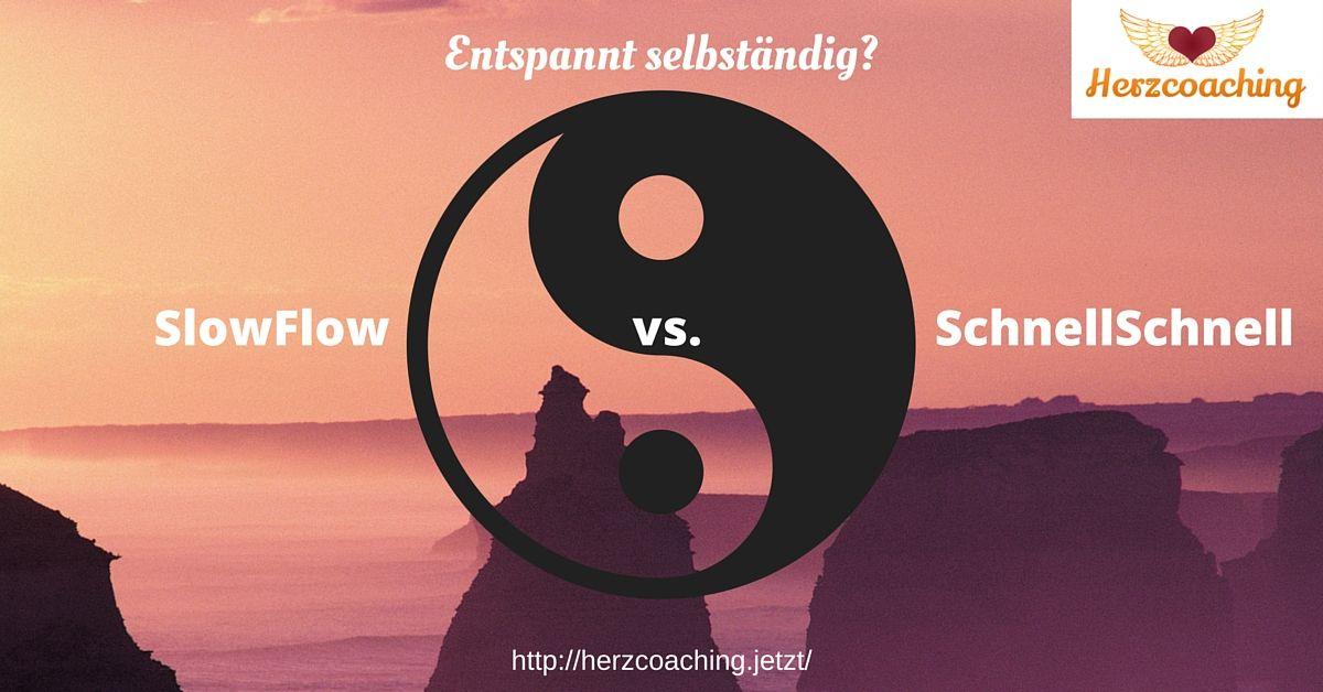SlowFlow vs. SchnellSchnell